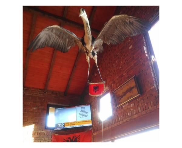 Interno di un bar trovato sulla strada per Vrane