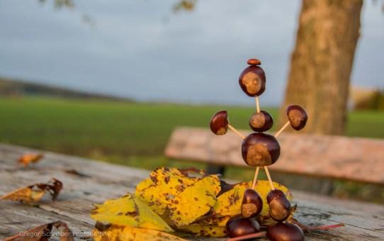 Herbst Impressionen 2015
