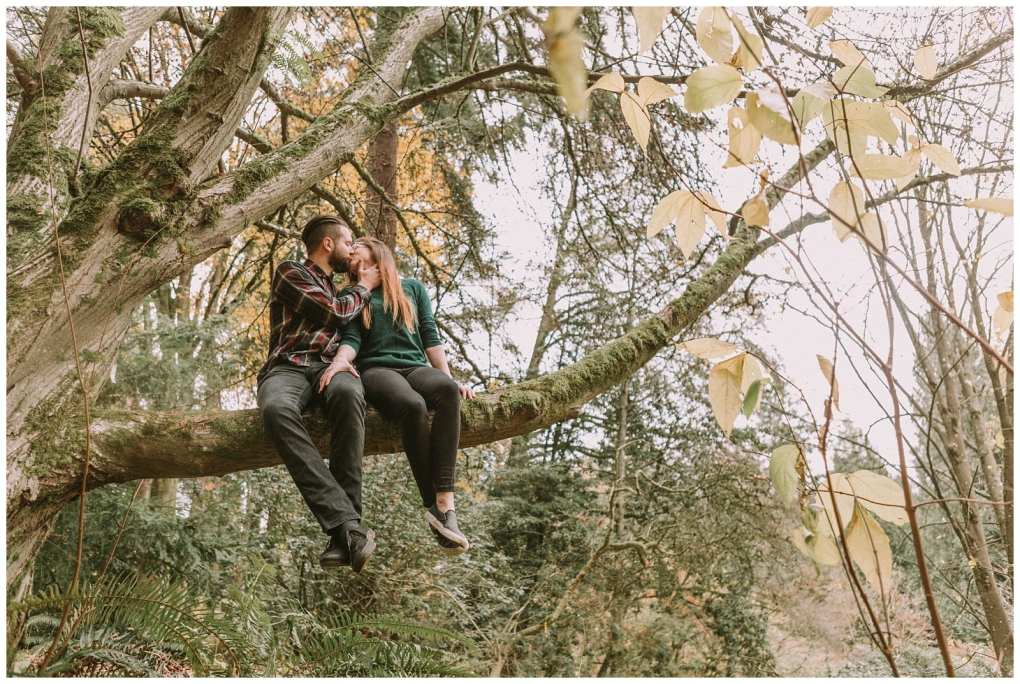 Washington Arboretum Seattle engagement in a tree. Adventurous outdoor Seattle and Snohomish wedding photography in the pacific northwest and montana rocky mountains.