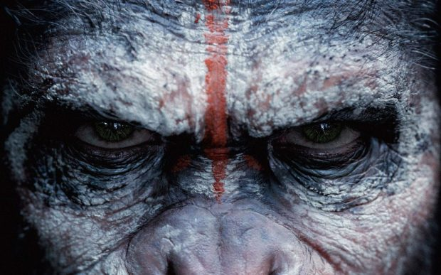 Caesar-in-Dawn-Of-The-Planet-Of-The-Apes-Wallpaper