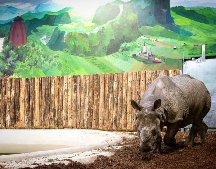 Elkészült a Nyíregyházi Állatpark India háza