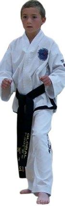 learn taekwon-do