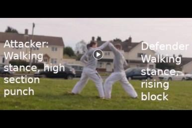 2 Step Sparring Tutorial Video