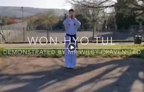 Won-Hyo-video