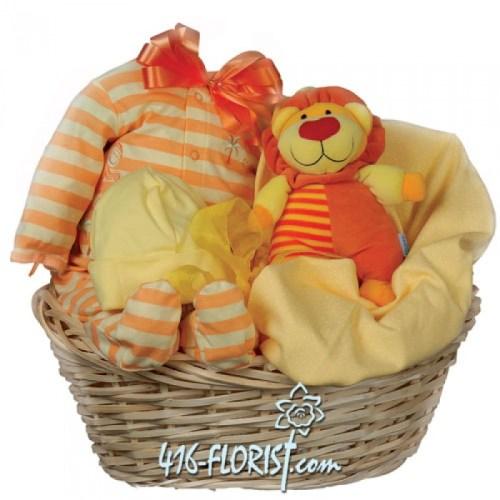 My Little Baby - Gift Baskets - Toronto