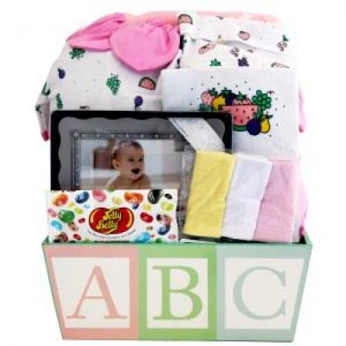 newborn care baby gift baskets