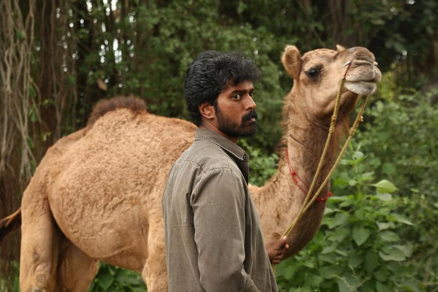 ஸ்டார் இந்தியா (விஜய் டிவி) மீது வழக்கு தொடர்ந்த பக்ரீத் தயாரிப்பாளர்
