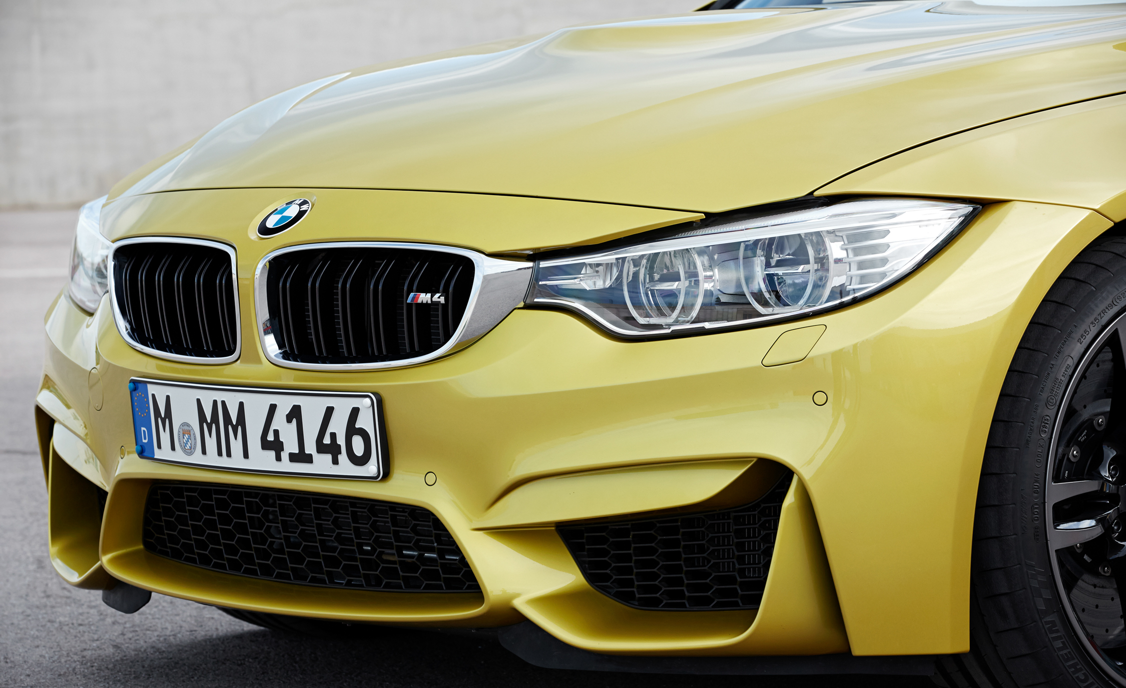 2015 BMW M4 Coupe Exterior Grille