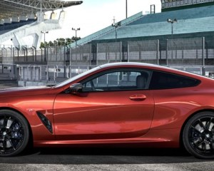 2019 BMW 850i Side View