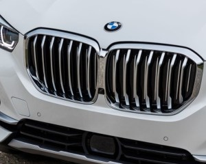 2019 kidney grille review