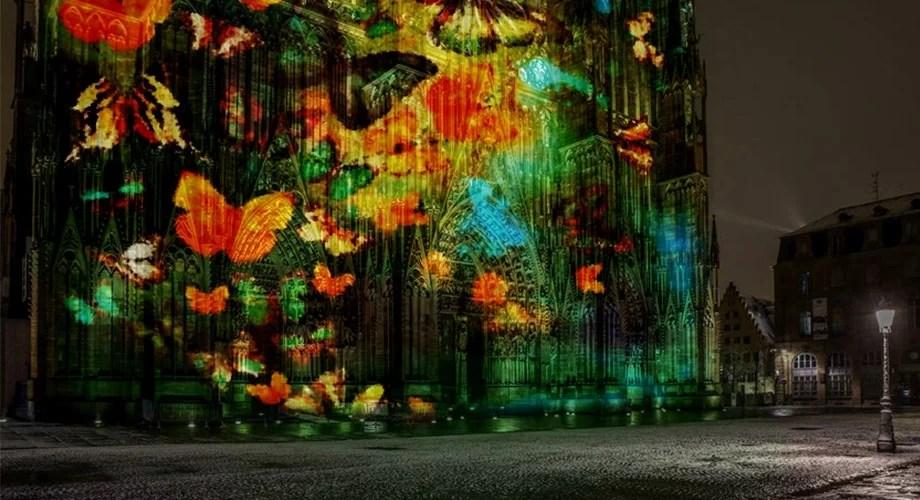 illumination cathédrale strasbourg 2020