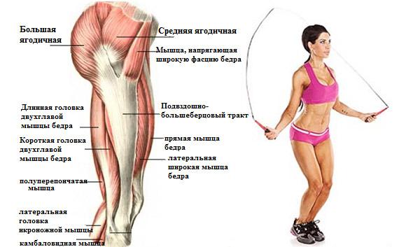 este posibilă pomparea mușchilor în varicoză)