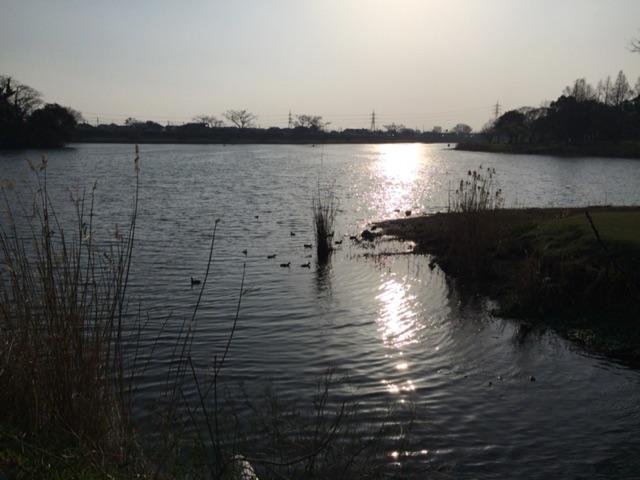 下江津湖 夕暮れ
