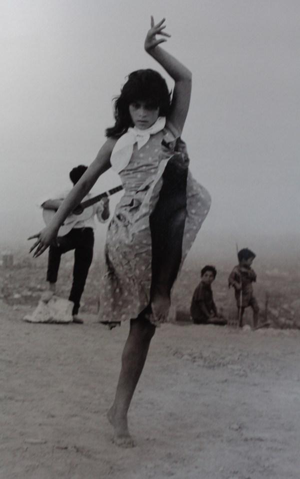 Catalogación de fotos | Flamencoole