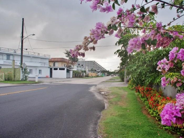 シェラトングアム周辺