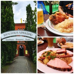 13. We had lunch and beer at the biergarten (beer garden) in Brauhaus Spandau, where we also had pork knuckles and mixed platters of various pork cuts. This was not one of them, but patrons in the more traditional establishments can even bring their own food.