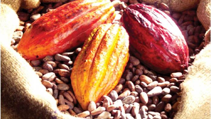Cross River plans to earn revenue from cocoa, rice 1