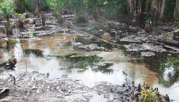 Federal Government votes $190 million for Ogoni clean-up