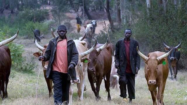 killer herdsmen
