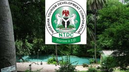 Image result for Stakeholders call for development of Nigeria's tourism sector