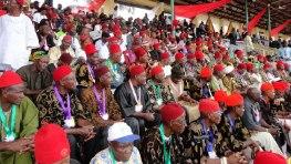 Image result for Bayelsa 'Ohaneze Ndi-Igbo' cancels 2017 Igbo-Day celebration