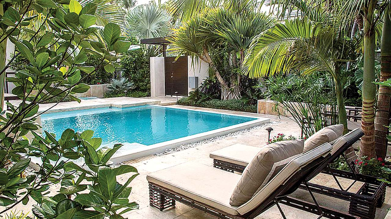 Tropical garden in any space or climate — Property — The ... on Tropical Small Backyard Ideas id=50841