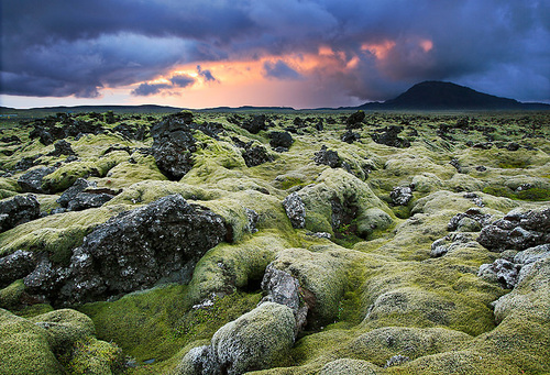 Iceland: Where They Believe in Elves