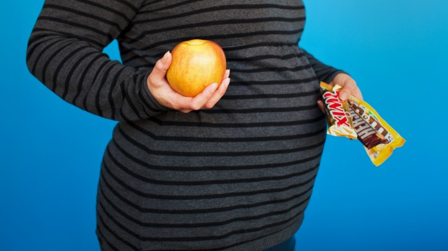 Pregnancy Study Shows Obesity Risk From Mother's Diet ...