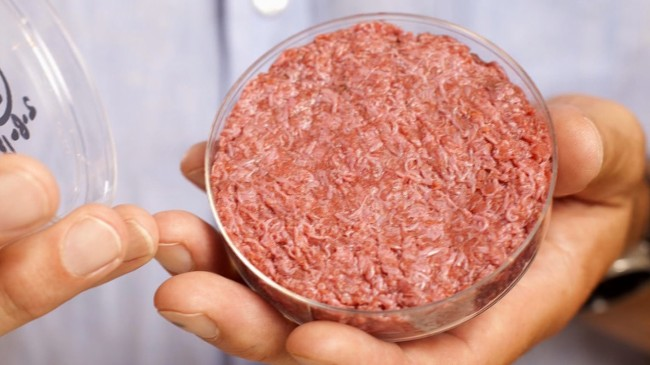 synthetic meat