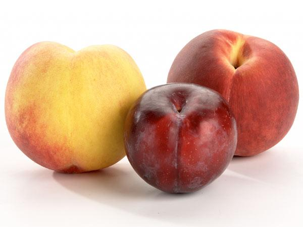 Fruit Listeria and Pregnancy: When to Worry