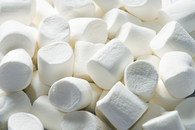 Marshmallows Can Teach People About Success in Life