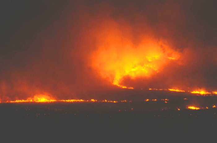 Climate Crisis and Dry Brush Fuels Oregon's Bootleg Fire [Video]