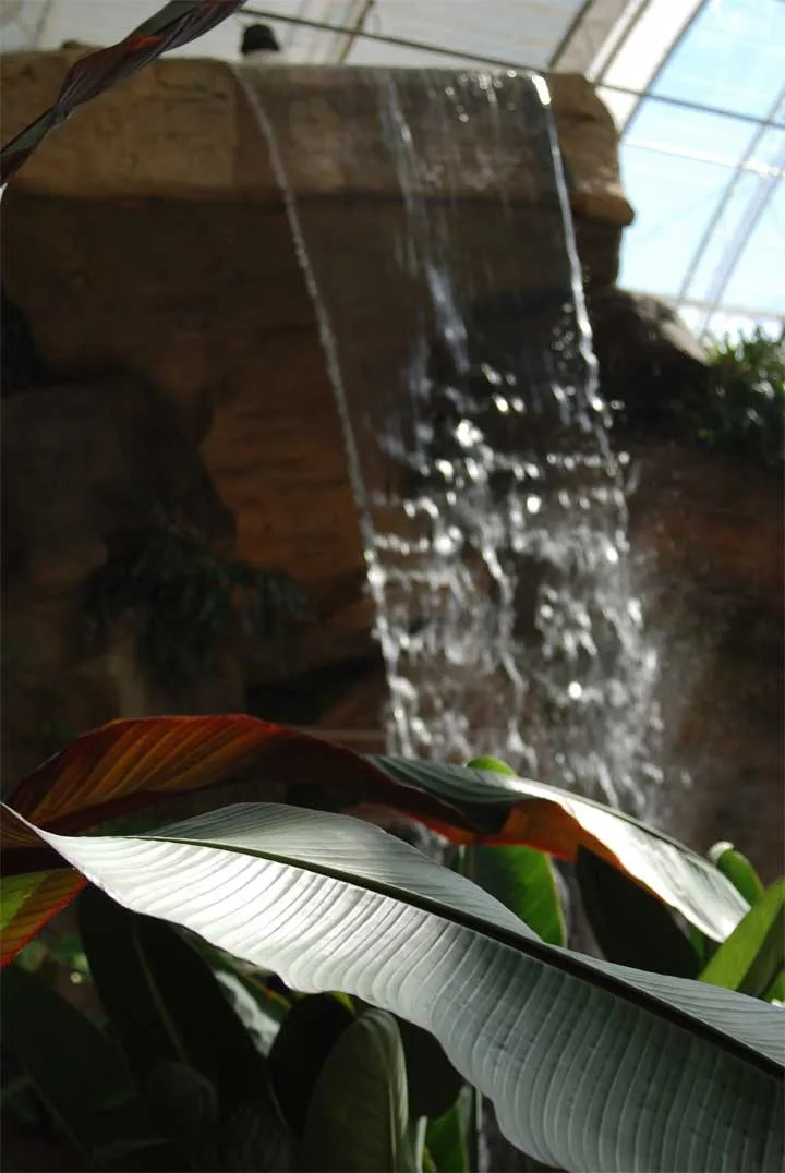 Indoor Waterfall Ideas