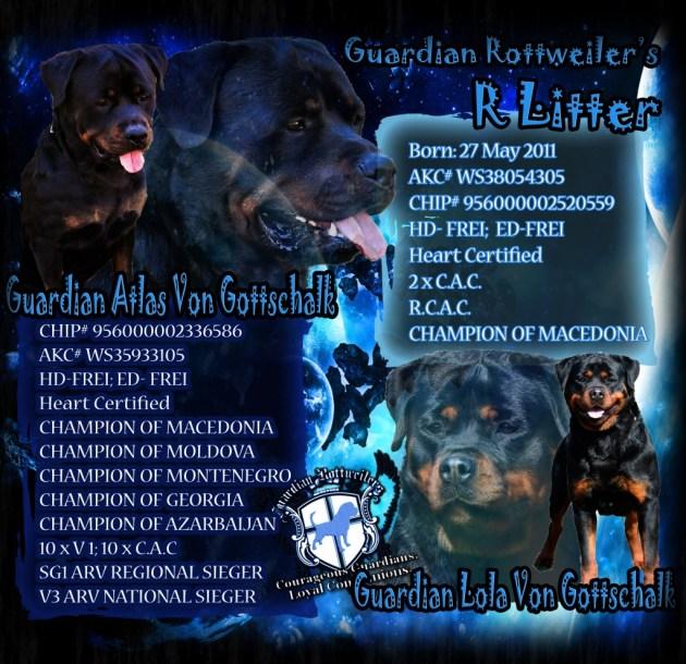 RLitter_Atlas_Lola_banner