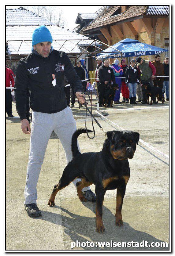 FARYCO TEREZSKY DVUR - march 2013 - 5