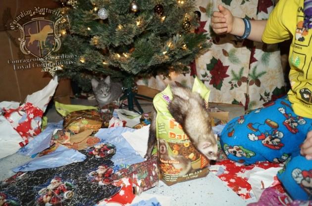 ChristmasMorning_2014_9913