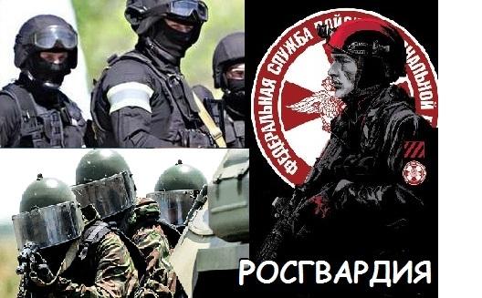 Утвержден перечень объектов, подлежащих обязательной охране войсками национальной гвардии РФ