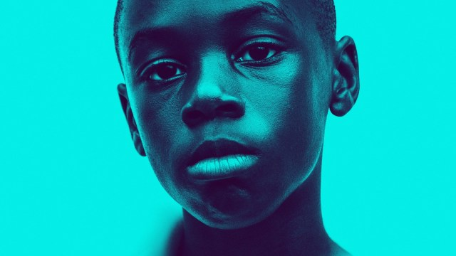 ANALISIS DEL DVD DE MOONLIGHT: Una historia visualmente expectacular.