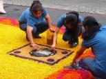 preparing carpets
