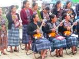 mandolin orchester