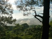 Reserva natural cerro Tisey-Estanzuela