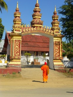 one of many pagodas