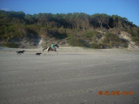 Caballos en la playa - Foto compartida por Carla S.