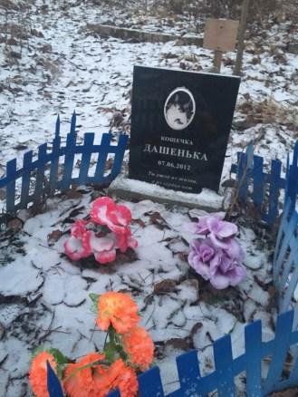 кладбища домашних животных, как похоронить, животное, в петрозаводске, память о животном