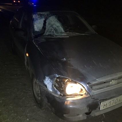 Фото: полиция Прионежского района