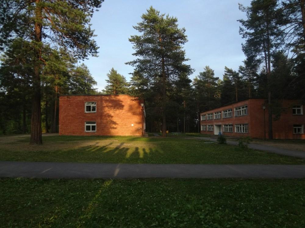 детский лагерь сосновый бор