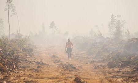 лесной пожар