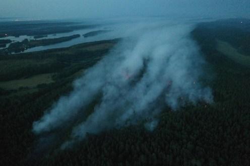 Пожар на дороге к старейшему российскому курорту в Карелии локализован