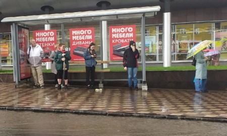 В ближайшую неделю в Петрозаводске будет тепло и влажно