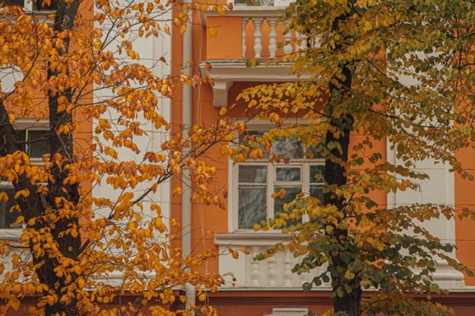 осень, петрозаводск